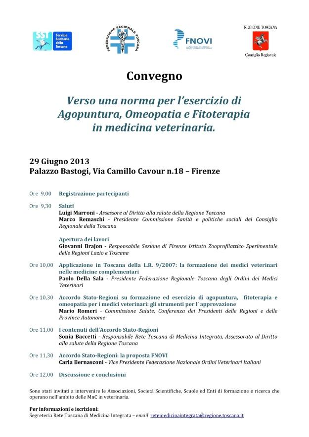 Firenze 29 giugno 2013-2