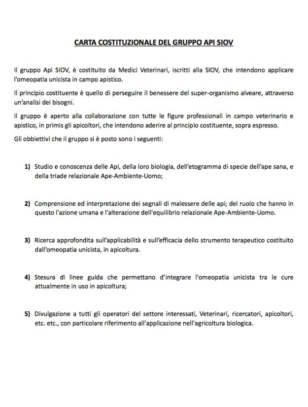 carta-costituzionale-gruppo-api-siov