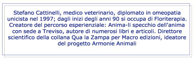 cattinelli-cv